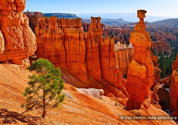 17 best images about southwest desert landscapes on pinterest