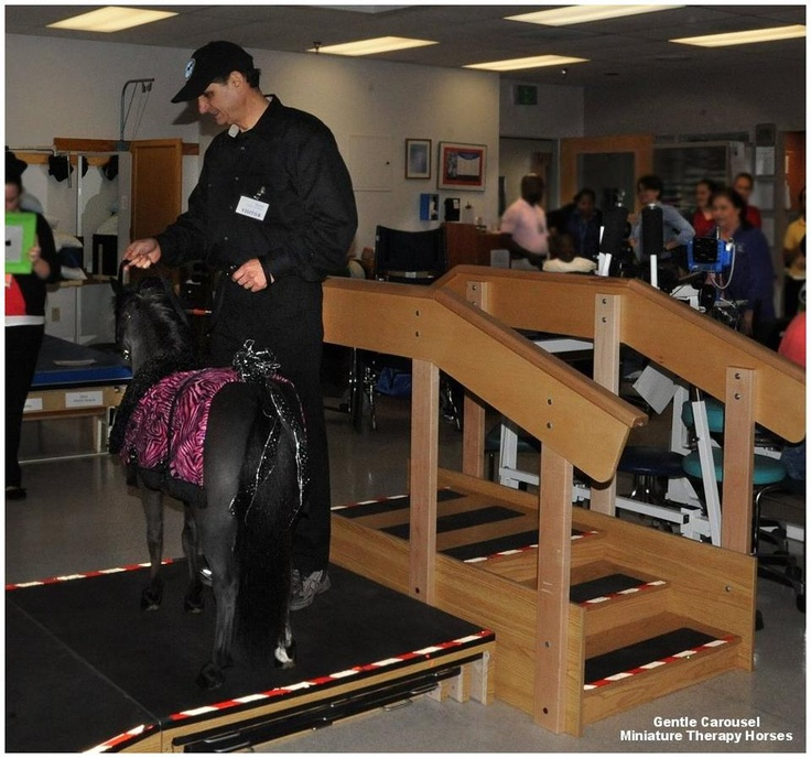 Therapy horse Magic tries out some equipment at a rehab hospital for patients who have suffered strokes, traumatic brain and spinal cord injuries, amputations and burns... and brings a little love at the same time.