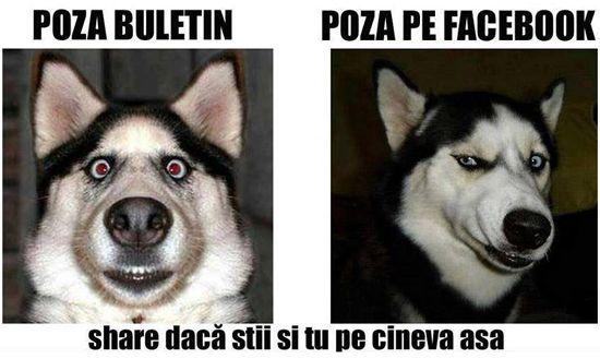 Poză Buletin – Poză Facebook
