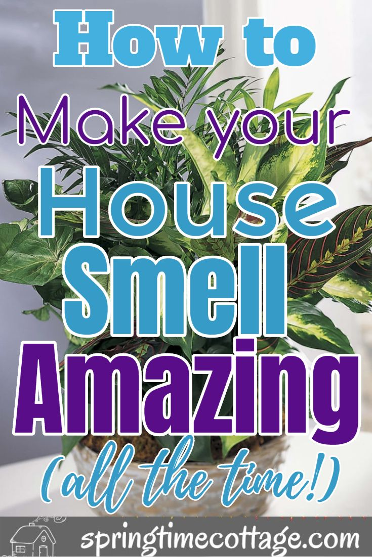 Smart Ways To Make Your Home Smell Wonderful House Smells
