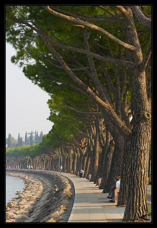 - Peschiera del Garda, Verona Italia -
