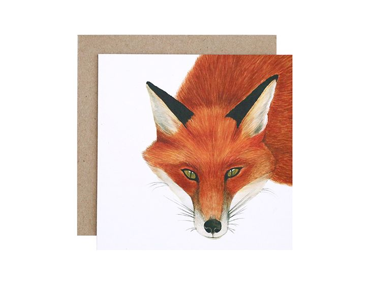 Frankie the Fox Greeting Card  Birthday, Get Well Soon or Congratulations?  For Me By Dee greeting cards are perfect for any animal lover, for any occasion!  Created and printed in Melbourne, Australia