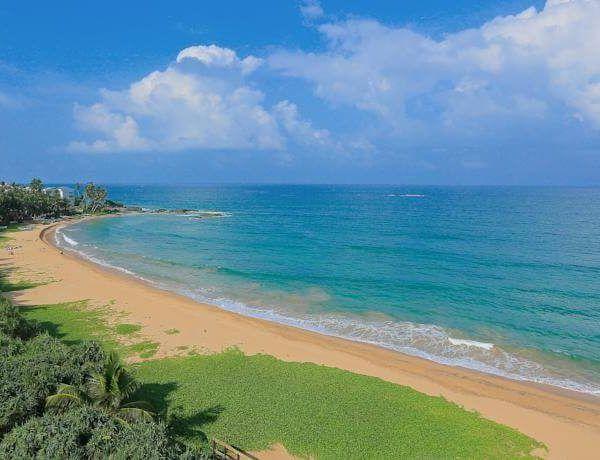 Отель Pandanus Beach Resort & Spa расположен на пляже в Индуруве, в 89 км от аэропорта Бандаранаике. #туры  К услугам гостей отеля Pandanus Beach Resort & Spa открытый бассейн, фитнес-центр, парикмахерская/салон красоты. #пляж  В отеле : 77 номеров. В каждом номере в вашем распоряжении телевизор, электрический чайник, мини-бар и собственная ванная комната с душем и феном, кондиционер, телефон. #отдых  Гости могут поужинать в ресторане отеля...