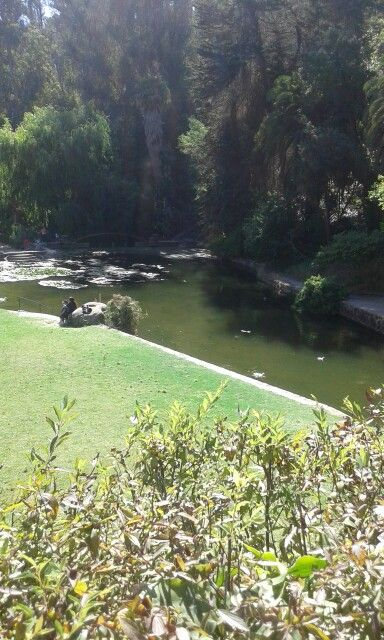 Paseo Jardin Botanico