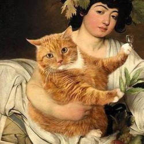 Assim posava Zarathustra, o gato—O melhor da Gato Gordo Arte