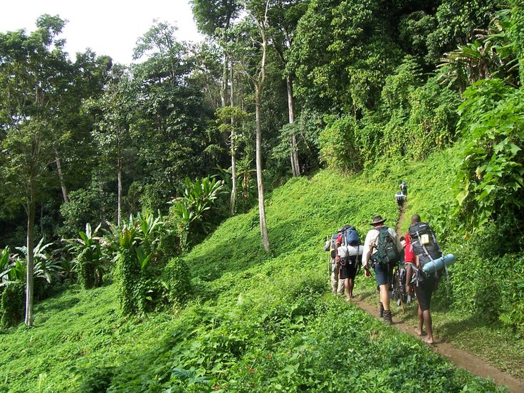 Kokoda Trail, Papau New Guinea Papau New Guinea's biological diversity makes the Kokoda an exhilarating 60-mile journey; don't forget to stock up your first aid kit with Malaria medication before you head out.