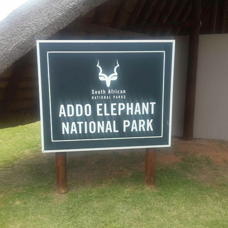 Addo Elephant National Park in Addo, Eastern Cape