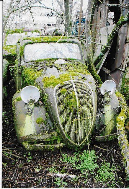 Fiat Topolino                                                                                                                                                                                 Plus