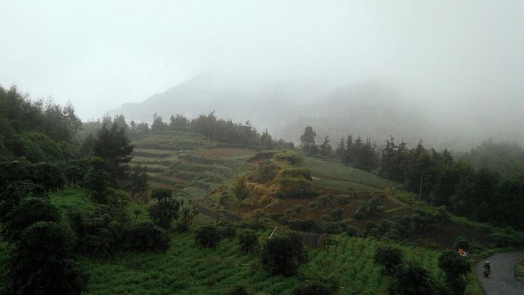 refresh your mind with a sweet things.. *dieng,wonosobo-indonesia*