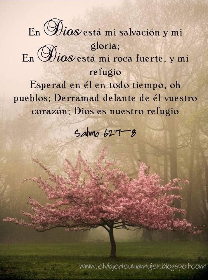 SALMO 62:5-8 Alma mía, en Dios solamente reposa, Porque de él es mi esperanza. 6 El solamente es mi roca y mi salvación. Es mi refugio, no resbalaré. 7 En Dios está mi salvación y mi gloria; En Dios está mi roca fuerte, y mi refugio. 8 Esperad en él en todo tiempo, oh pueblos; Derramad delante de él vuestro corazón; Dios es nuestro refugio. Selah