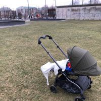 Out and about with the new iCandy Raspberry2 buggy in Berlin - review