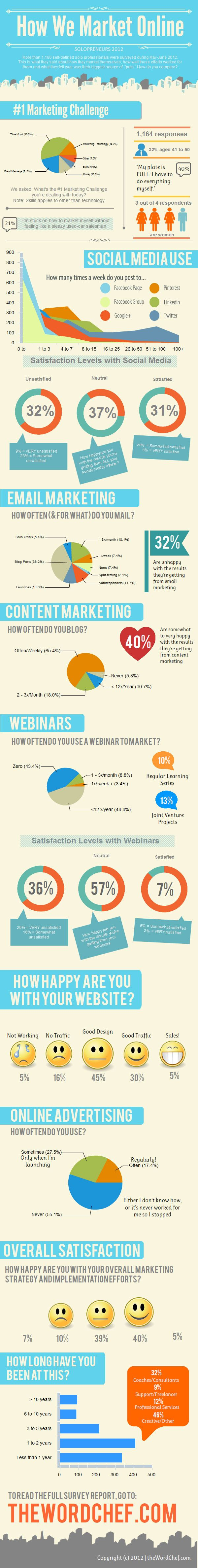 Solopreneurs-Online-Marketing-Survey-Infographic from the Word Chef