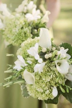 Bouquets: Bouquets Hydrangeas And Lilies, Bridal Bouquets, Green Bouquets, White Bouquets, Bouquets Ideas, Bridesmaid Bouquets Green, Calla Lilies Bouquets White, Green Hydrangeas Bouquets, Ohio Wedding