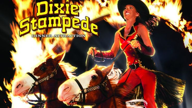 Dolly Parton's Dixie Stampede and Dinner Show Dolly Parton's Dixie Stampede offers magnificent horses, amazing stunt riding and fantastic food all under one roof. Add lodging, and you have the makings of a getaway to remember. Three days, 2 nights accommodations Two tickets to Dixie Stampede Dinner Show ** Package arrival days are Monday, Tuesday,