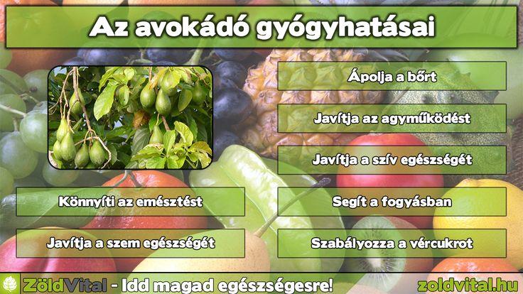 Az avokádó gyógyhatásai