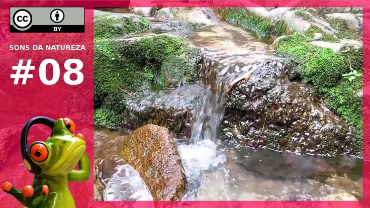 """""""Sons da Natureza Água"""" é a faixa #08 da série """"Sons da Natureza"""". Possui o tranquilizante som proporcionado pelo fluxo continuo de água corrente com a participação coadjuvante de pássaros cantando suavemente. Em seu livro """"O Be-a-ba da Chakraterapia"""", Deedre Diemer diz que muitas vezes, as emoções são simbolicamente representadas pela água, por isso, a audição de sons de água corrente é considerada uma das formas de relaxamento e cura do centro das emoções, ou seja, do segundo chakra."""