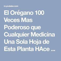 El Orégano 100 Veces Mas Poderoso que Cualquier Medicina Una Sola Hoja de Esta Planta HAce esto en - YouTube