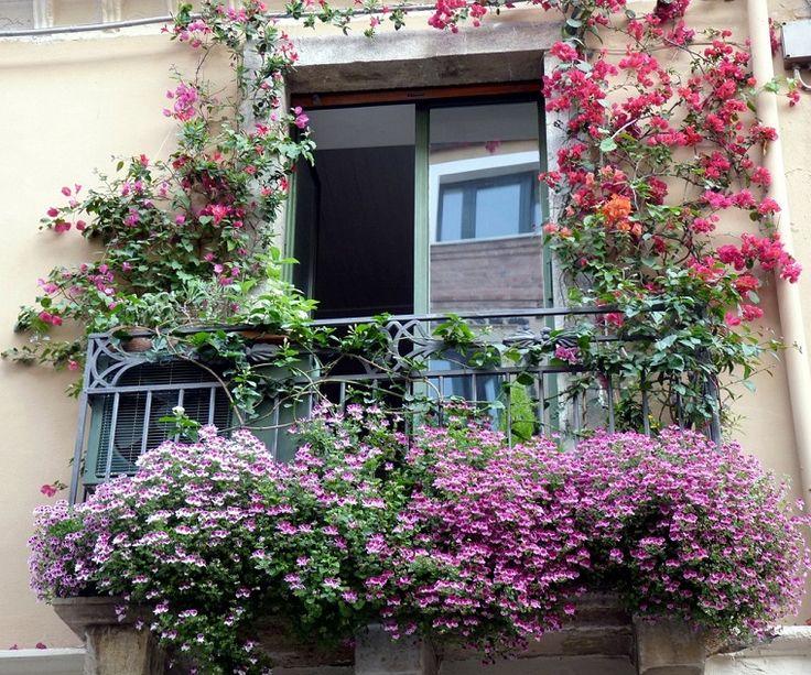 51 migliori immagini balconi fioriti su pinterest - Fioriere per davanzale finestra ...