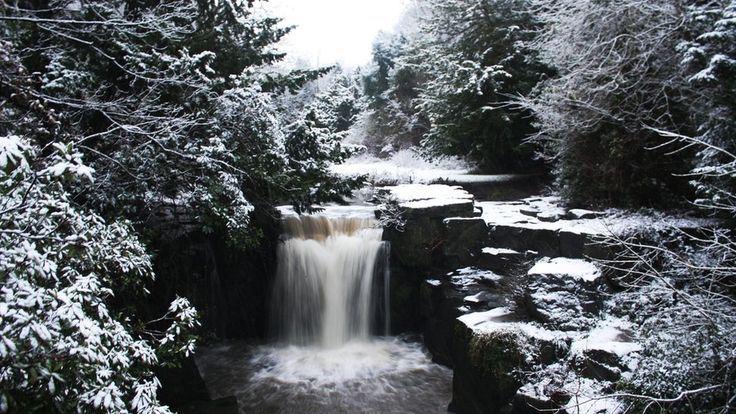 A waterfall gushes and the surrounding trees and rocks are white in the snow.