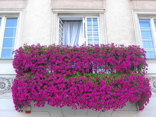 Διακόσμηση μπαλκονιού με λουλούδια29