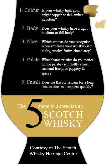 The five ways to approach your whisky: a guide to understanding the terminology of whisky tasting.