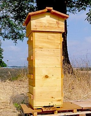 EXCELLENT website for bee keeping! Lots of handy tips and tricks!