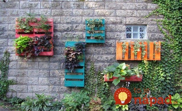 Geniálne tipy, ako využiť staré palety pri pestovaní: Zelený záhon dopestujete aj na betóne!
