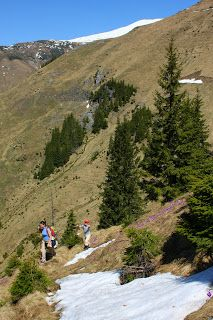 Marius CHIRA: Spre Varful Ineu, Valea Vinului - Muntii Rodnei, 1 Mai 2010