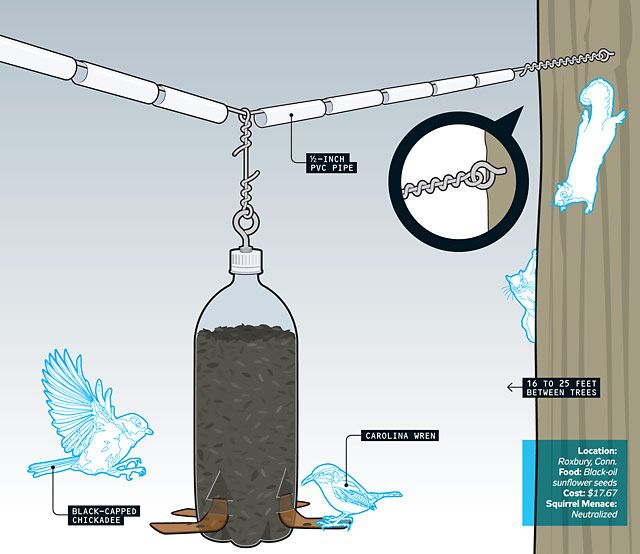 a squirrel-proof bird feeder. it's probably really entertaining to watch them slip off the ropes... heheheh