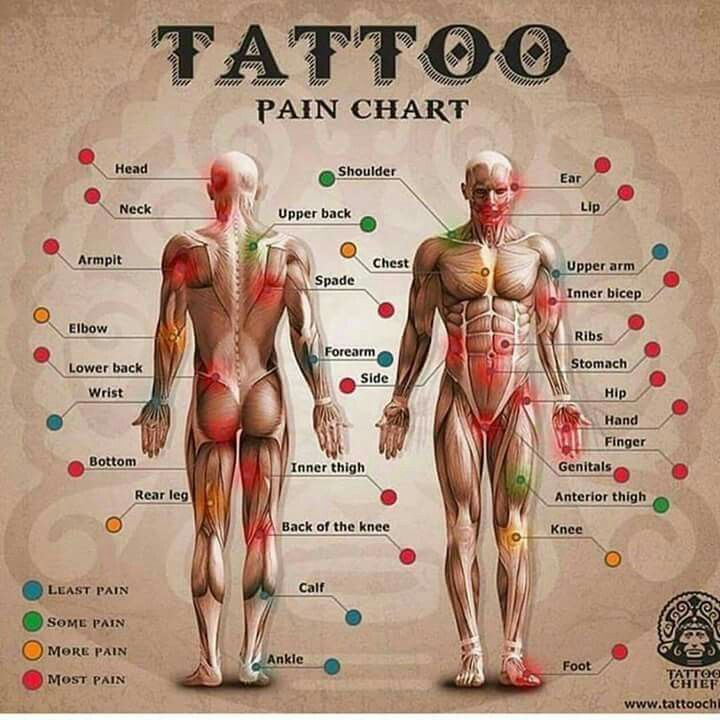 Ber ideen zu pain scale auf pinterest chronische for How bad does getting a tattoo hurt