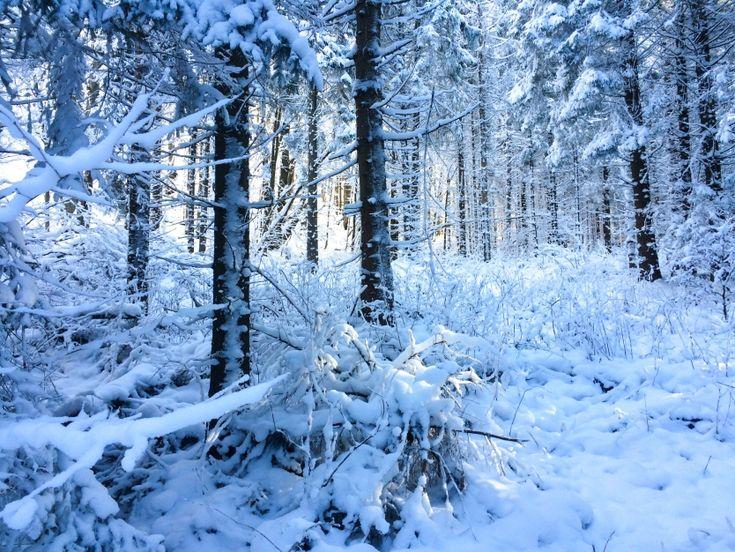 zima w Bieszczadach