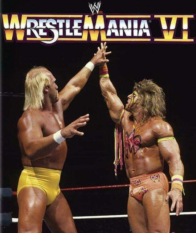 433 Best Images About Legends Of WWF / WWE On Pinterest
