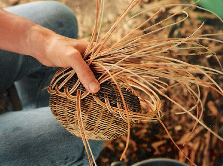 traditional cherokee basketry