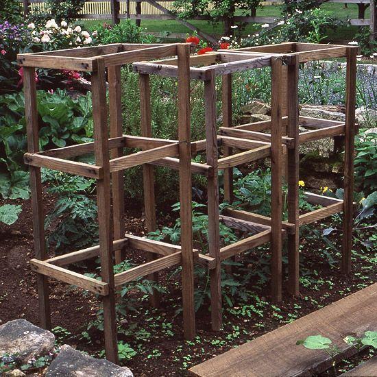 Ladder tomato support! Put at back near brick wall.