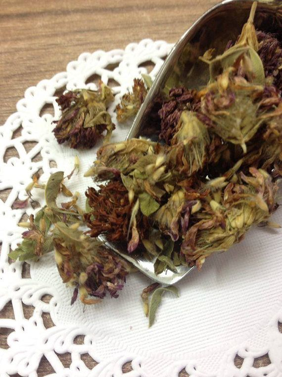 Greek red clover buds amazing herb full of vitamins by Armenos