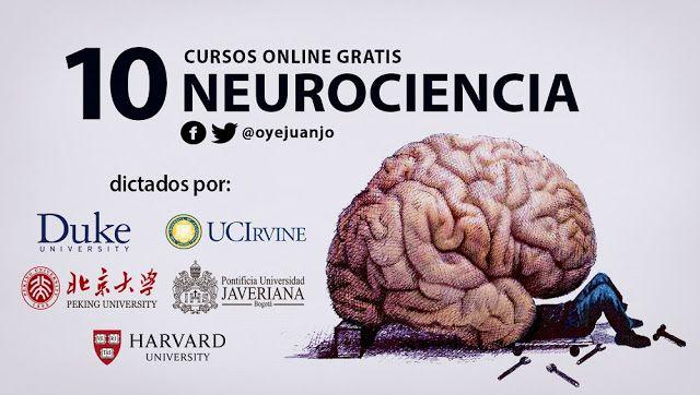Las universidades más prestigiosas del mundo comparten una agenda de cursos virtuales y gratuitos de Neurociencia con posibilidad de acreditación.
