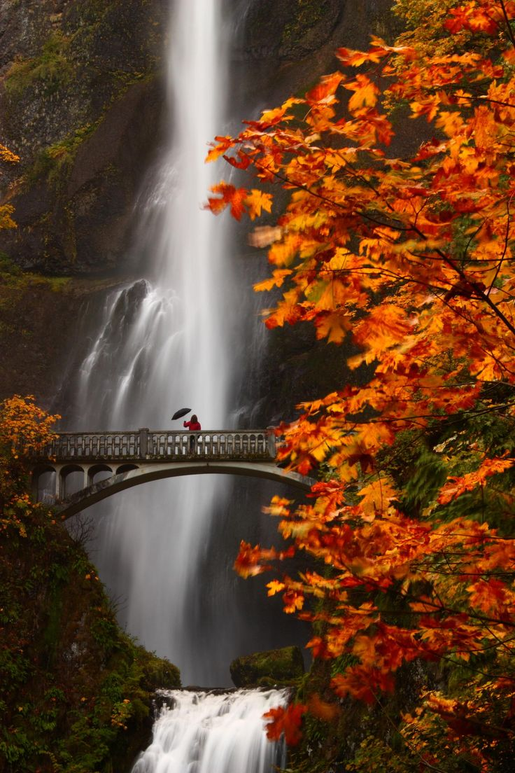 Multnomah Moment - My sister met up with me in the gorge for a couple of day hikes.  We stopped at the popular Multnomah Falls to capture a memoriable Autumn moment.  The inspiration behind this shot came from Northwest Photographer Darren White.