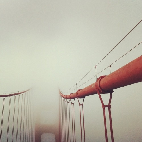 @KarlTheFog. Photo courtesy @KarlTheFog on Twitter & Instagram