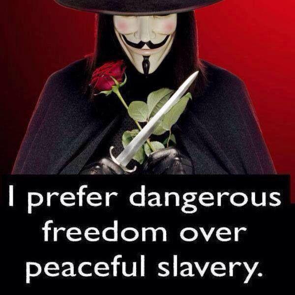 slavery and freedom the american paradox American slavery, american freedom: the ordeal of colonial virginia, 2003, 454 pages, edmund sears morgan, 039332494x, 9780393324945, ww norton & co.