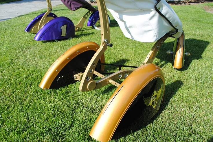 The Roddler Gold and Black Travel system stroller