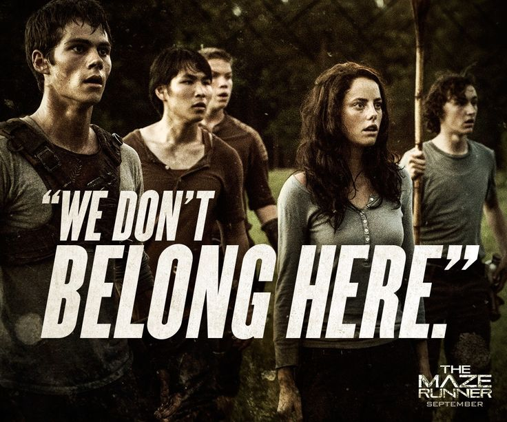 Maze Runner Quotes | The Maze Runner Film Movie Quotes