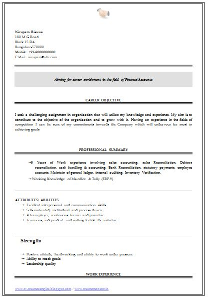 a very beautiful and professional resume sample    template for all sample template of