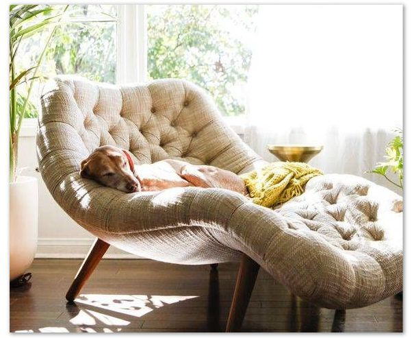 Comfy Reading Chair Best Reading Chairs For Living Room Cozy