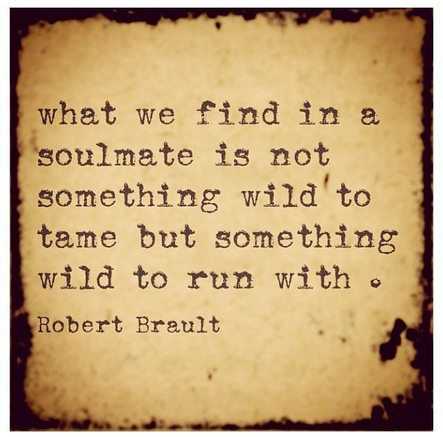 Love Each Other When Two Souls: 25+ Best Soul Mate Quotes On Pinterest