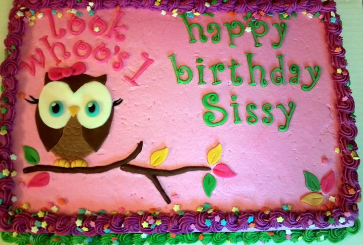 Look Whoo S One Owl First Birthday Sheet Cake