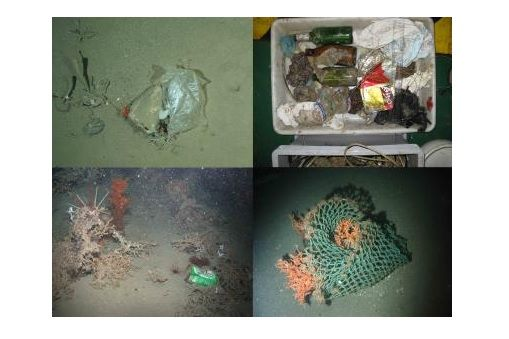 Oceans of rubbish 16/06/2014 Human litter has worked its way into remote and inaccessible parts of the ocean where even humans haven't managed to penetrate. A large-scale European seafloor survey highlights the extent of the problem of litter in marine environments.
