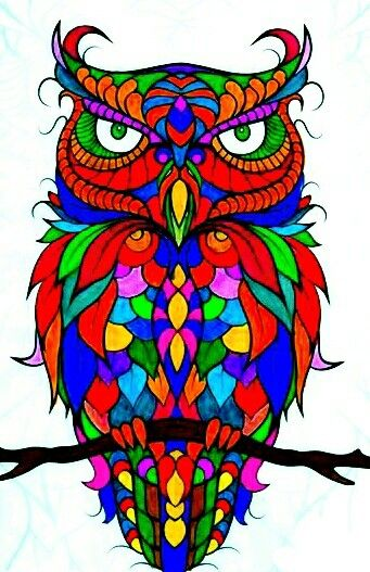 Owl Coloring PagesOwlOwl BirdBirdsColouring PagesPrintable PagesColoring BooksColoring SheetsOwls