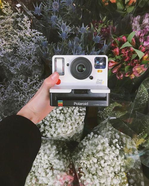 If this wasnt love at first sight Im not sure what it is  The Polaroid OneStep2 by @polaroidoriginals via Polaroid on Instagram - #photographer #photography #photo #instapic #instagram #photofreak #photolover #nikon #canon #leica #hasselblad #polaroid #shutterbug #camera #dslr #visualarts #inspiration #artistic #creative #creativity