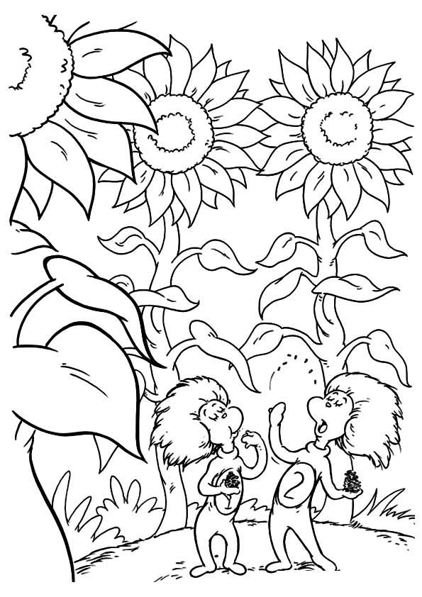 Thing One And Thing Two In The Garden Coloring Pages Dr Seuss