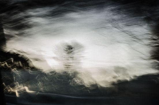 Winter by Siobhan Costigan